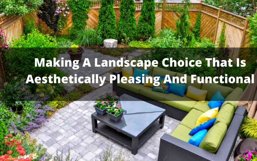 Making A Landscape Choice